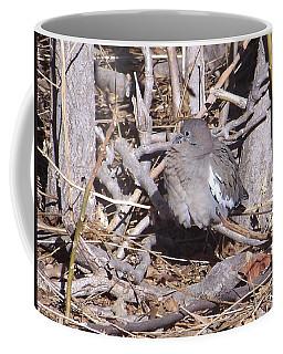 Fluffy Dove Coffee Mug