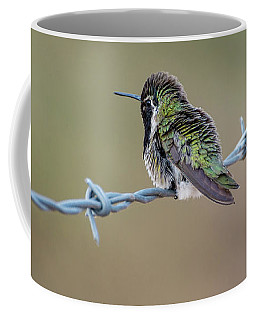 Fluffy Hummingbird Coffee Mug