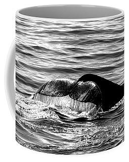 Fluke Cascade Black And White Coffee Mug