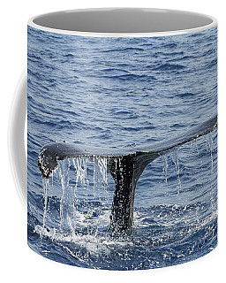 Fluke  Coffee Mug by Shoal Hollingsworth