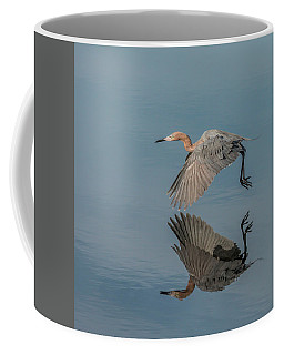 Fly By Reflection Coffee Mug