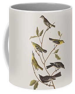 Fly Catchers Coffee Mug