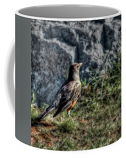 Coffee Mug featuring the photograph Fly Robin Fly by Pennie  McCracken