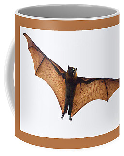 Flying Bat Coffee Mug by Craig Dingle