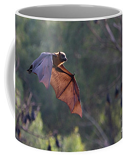 Flying Fox In Mid Air Coffee Mug by Craig Dingle