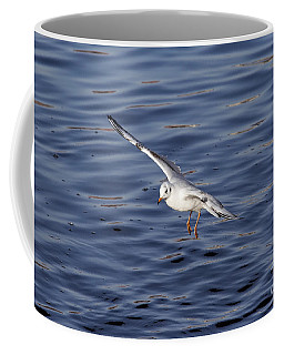 Flying Gull Coffee Mug