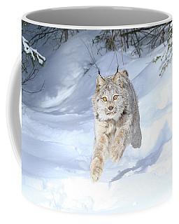 Flying Lynx Coffee Mug by Steve McKinzie
