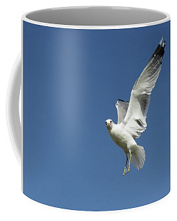 Flying Seagull 2 Coffee Mug