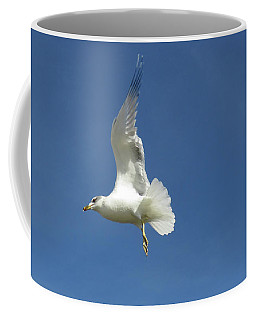 Flying Seagull 6 Coffee Mug