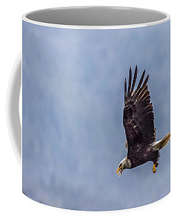 Flying With His Mouth Full.  Coffee Mug