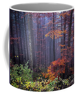 Coffee Mug featuring the photograph Fog And Forest Colours by Elena Elisseeva