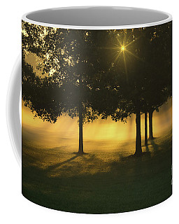 Coffee Mug featuring the photograph Foggy Burst Of Morning by Rachel Cohen