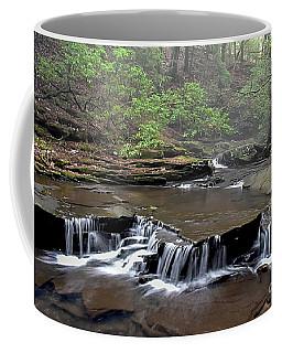Foggy Cascades Coffee Mug by Debbie Green