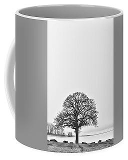 Foggy Day At The Lake Coffee Mug
