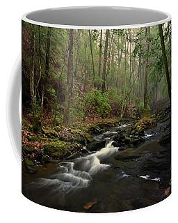 Foggy Day Coffee Mug by Debbie Green