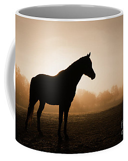 Foggy Daybreak Coffee Mug