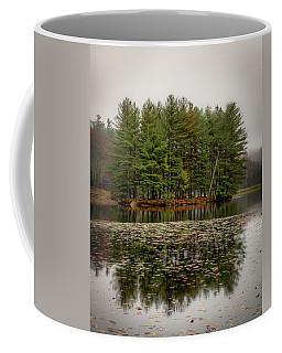 Foggy Island Reflections Coffee Mug