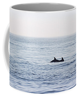 Foggy Morning Swim Coffee Mug by Allan Levin