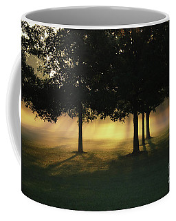 Coffee Mug featuring the photograph Foggy Rays Of Morning by Rachel Cohen