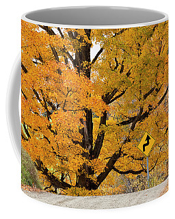Foliage Directions Coffee Mug