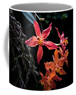Coffee Mug featuring the photograph Follow The Leader by David Sutton