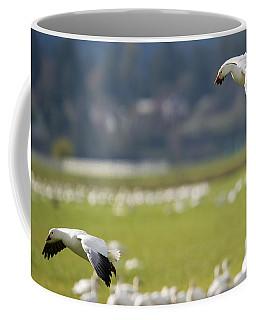Follow You In Coffee Mug