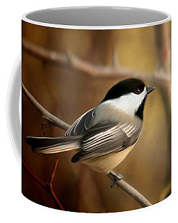 Following The Light Coffee Mug by Beve Brown-Clark Photography