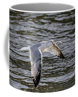 Food Chain Coffee Mug by Ray Congrove