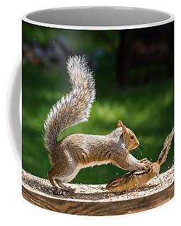 Food Fight Squirrel And Chipmunk Coffee Mug