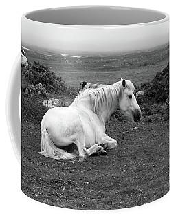 Fooggy Day Roundstone Coffee Mug