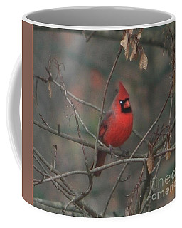 Coffee Mug featuring the photograph Fooled By Winter by Barbara S Nickerson
