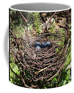 Steel Eggs For The Birds Coffee Mug