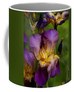 For The Love Of Iris Coffee Mug