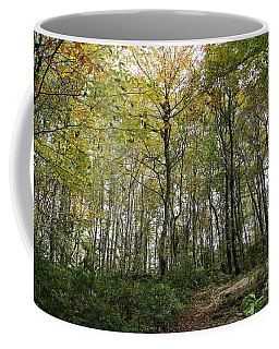 Forest Canopy Coffee Mug