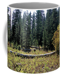 Forest Clearing Coffee Mug
