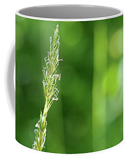 Forest Dweller Coffee Mug
