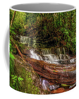 Coffee Mug featuring the photograph Forest Falls by Christopher Holmes