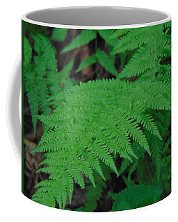 Forest Fern Coffee Mug