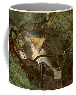 Forest Interior With A Waterfall Papigno Coffee Mug