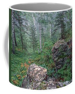 Forest Landscape 05 Coffee Mug