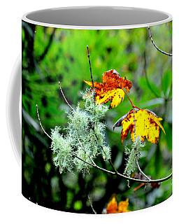 Forest Little Wonders Coffee Mug