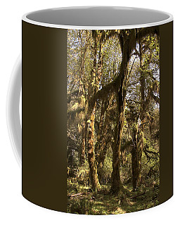 Forest Setting In Hoh Rain Forest Coffee Mug