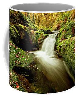 Forest Stream Coffee Mug by Jorge Maia
