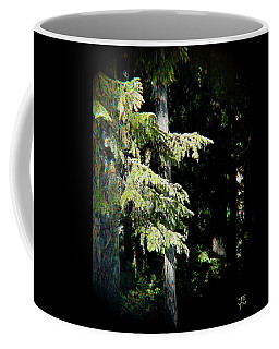 Forest Sunlight - 1 Coffee Mug