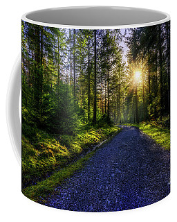 Coffee Mug featuring the photograph Forest Sunlight by Ian Mitchell