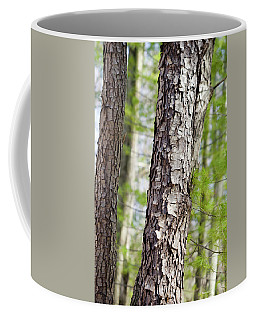 Coffee Mug featuring the photograph Forest Trees by Christina Rollo