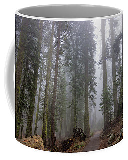 Coffee Mug featuring the photograph Forest Walking Path by Peggy Hughes