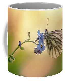 Forget Me Not Coffee Mug by Jaroslaw Blaminsky