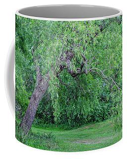 Forgotten Tree Coffee Mug by Kathleen K Parker