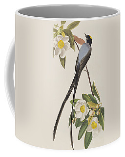 Fork-tailed Flycatcher  Coffee Mug